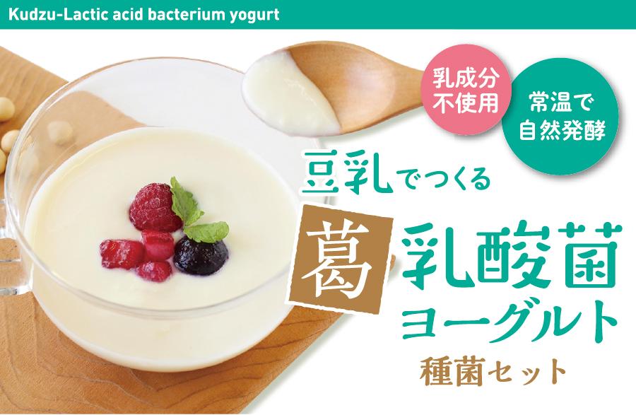 豆乳で作る葛乳酸菌種菌セット
